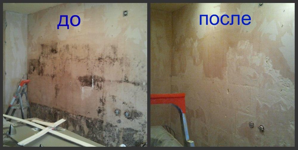 Как убрать плесень в ванной комнате на стенах своими руками