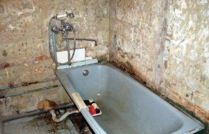 Грибок в ванной комнате, обнаруженный в ходе ремонта под снятой плиткой