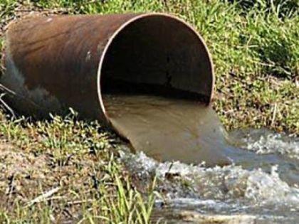 Гидробиология очистки сточных вод