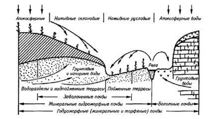 Признаки заболачивания почв грунтовыми и напорными водами