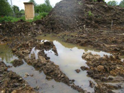 Наличие заболоченных и подтопленных мест на участке – явное свидетельство высокого уровня грунтовых вод либо наличия глинистых почв с плохими дренажными характеристиками