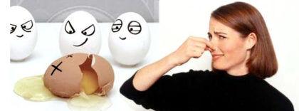 Жуткий запах протухших яиц говорит только об одном – в воде наличествует излишек сероводородных масс