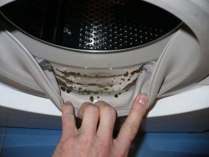 Нередко в ванной комнате очагом грибкового поражения является стиральная машина – плесень может быть как за ее задней стенкой, так и в резиновом уплотнителе барабана или внутри самой бытовой техники. Последнее распознается по затхлому запаху, исходящему от машины, а также от белья, постиранного в ней